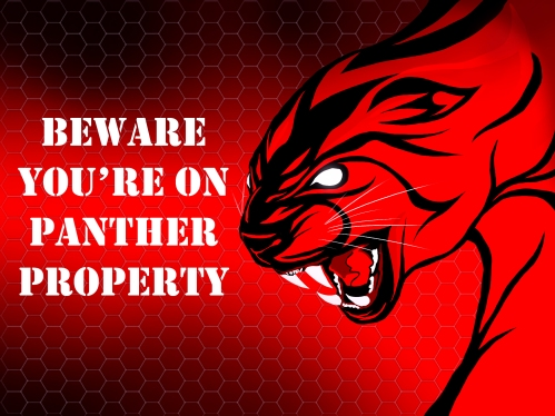 Stretton Panthers